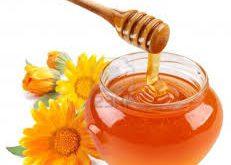 عمده فروشی عسل