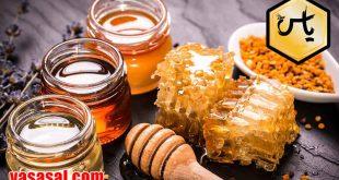 فروش آنلاین عسل وحشی