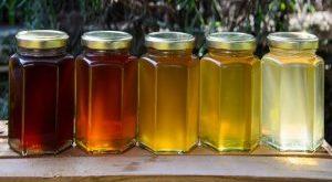 خرید اینترنتی عسل مرکبات